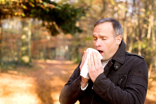 Tips for surviving allergy season
